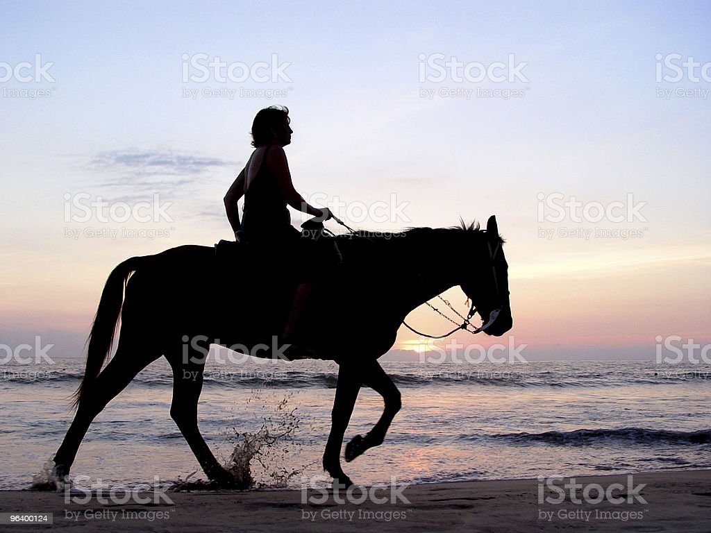 Silhouette of a woman riding a horse on the beach royalty-free stock photo