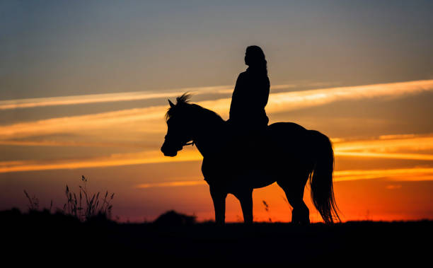Silhouette of a woman riding a horse on the dawn sky background picture id980074894?b=1&k=6&m=980074894&s=612x612&w=0&h=ev ydpuoh7 znvlq13nzepuexbamy0tayjjjtylec44=