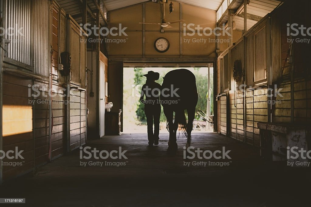 Silhouette of a woman with her horse in stable stock photo