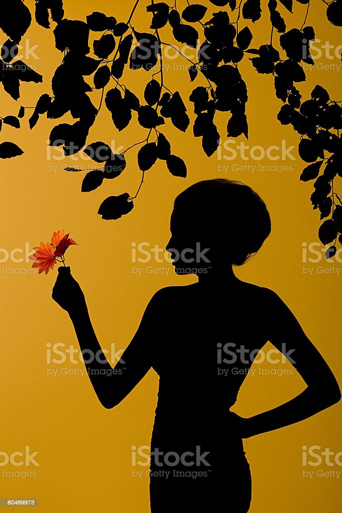 Silhouette of a woman with leaves Lizenzfreies stock-foto