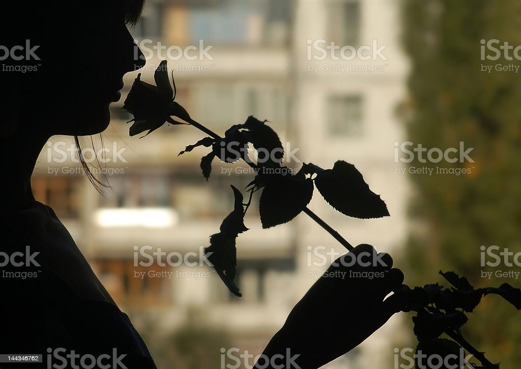 Silhouette of attractive young women with a flower stock photo