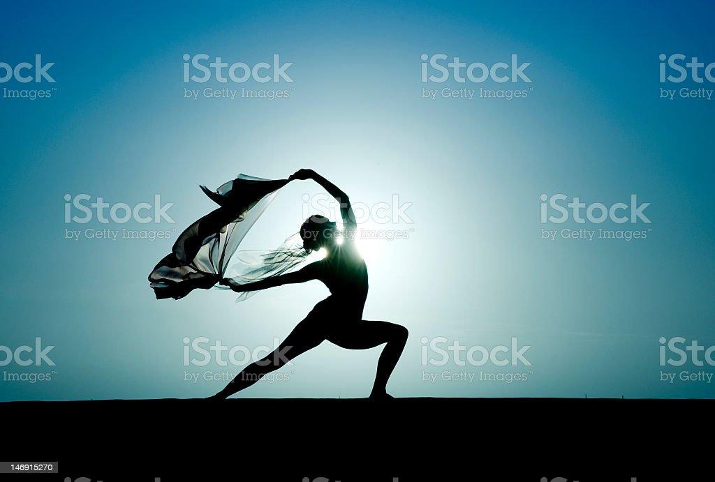 Ballet au coucher du soleil - Photo