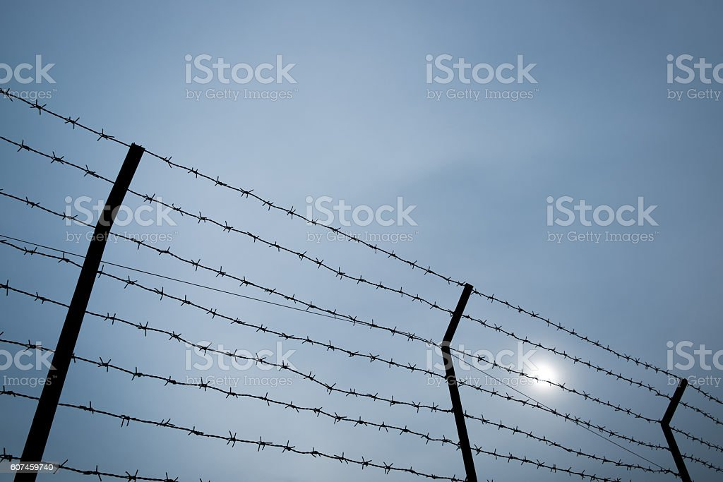 Silhouette of barbed wire on the fence. stock photo