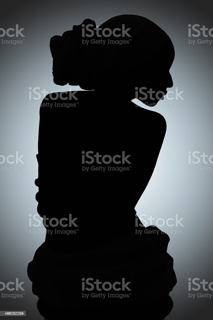 Silhouette of beauty stock photo