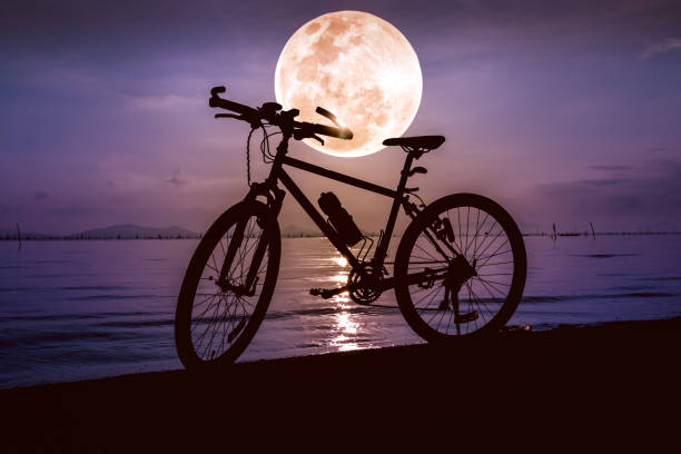 Silhouette of bicycle on beach against beautiful full moon. stock photo