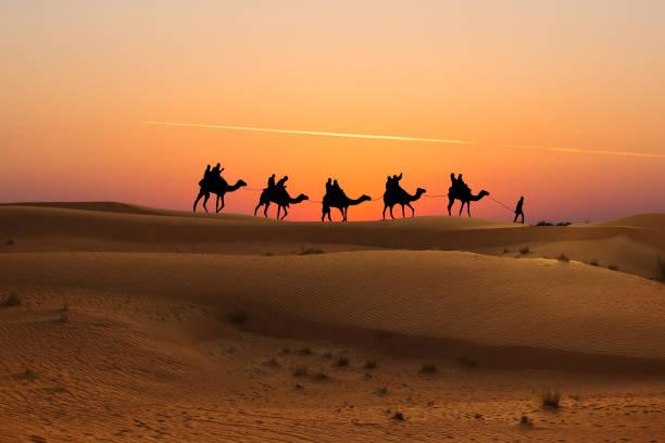 silhouette von kamelkarawane mit menschen auf der wüste bei sonnenuntergang - sahara stock-fotos und bilder