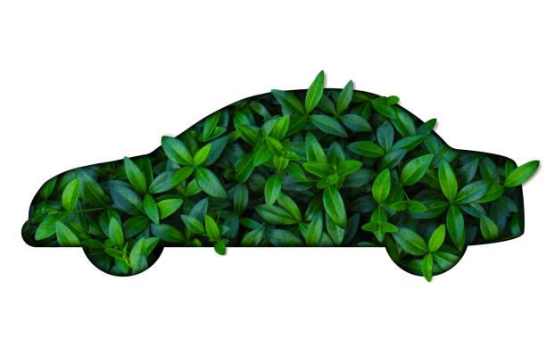 silhouette of car out of green leaves on white background. - auto a combustibile alternativo foto e immagini stock