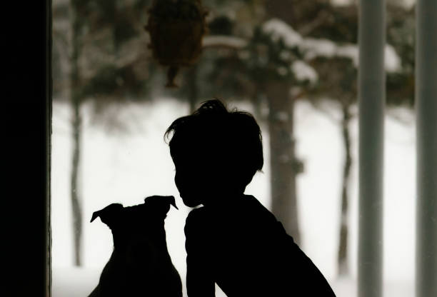 Silhouette of child and dog looking through window at winter picture id1192819165?b=1&k=6&m=1192819165&s=612x612&w=0&h=pazqye5cv6puxhkcszgrdaisds29xhdnzn5u3fytm2e=
