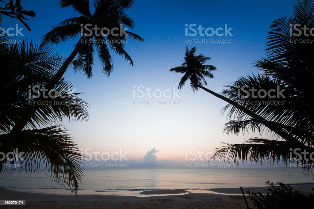 Silhouette of coconut tree on beach during sunrise,  Thailand royalty-free stock photo