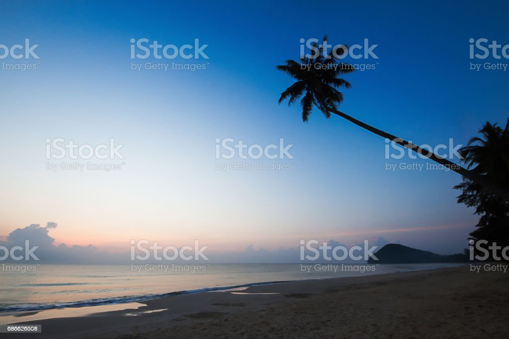 Silhouette of coconut tree on the beach during sunrise photo libre de droits