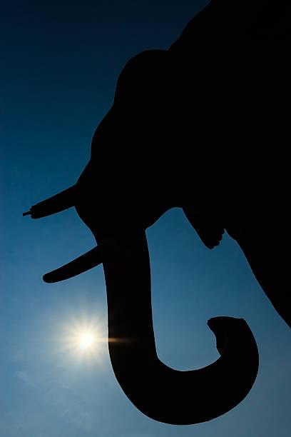 kontur elefanten-statuen in historischer park sukhothai, thailand. - elefanten umriss stock-fotos und bilder