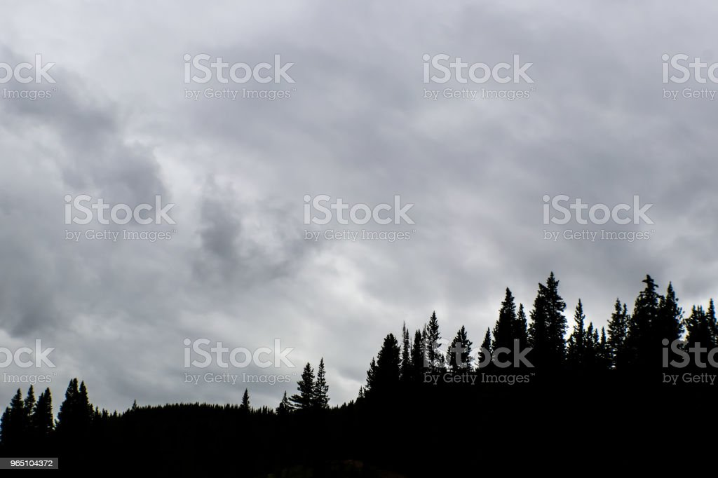 Silhouette of evergreen trees against a stormy sky royalty-free stock photo
