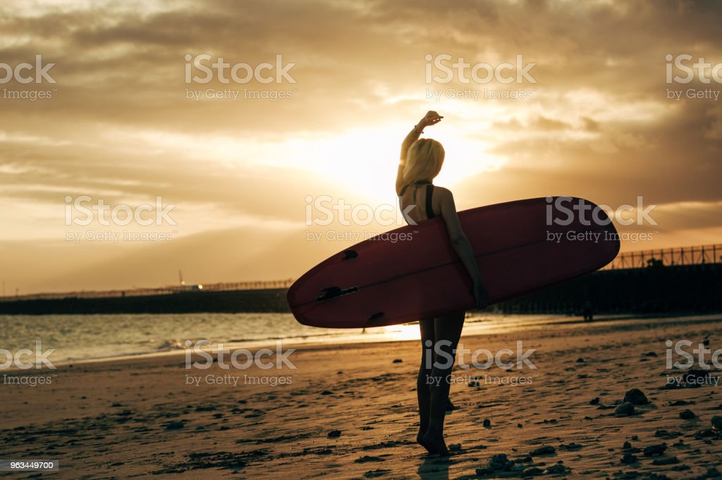 silhouette of female surfer posing with surfboard at sunset with backlit - Zbiór zdjęć royalty-free (Deska surfingowa)