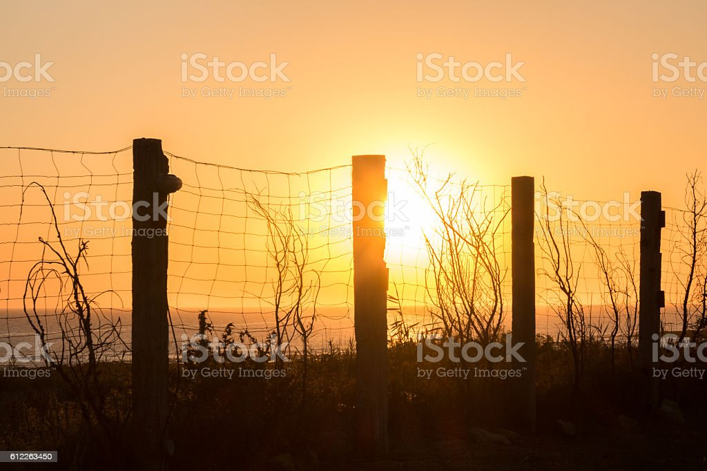 silhouette of fencing along the coast at sunset stock photo