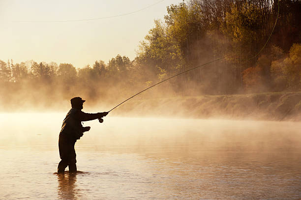 Silhouette of Fly Fisherman in Nova Scotia A fly fisherman fishes for Striped Bass in the early morning fog on a river in Nova Scotia. fisherman stock pictures, royalty-free photos & images