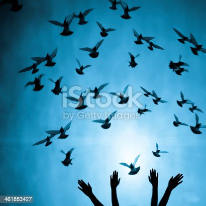 istock Silhouette of four female hands reaching up to many doves 461883427