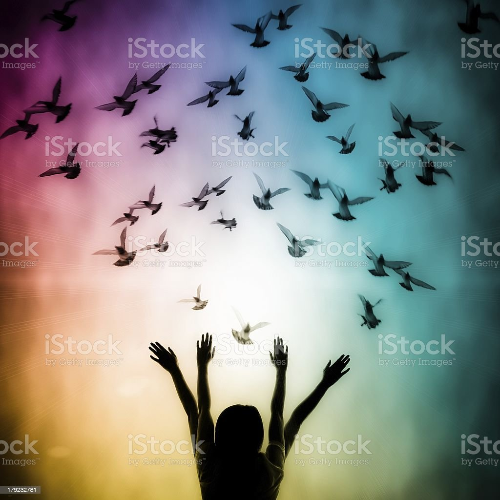 Silhouette of girl and dove stock photo
