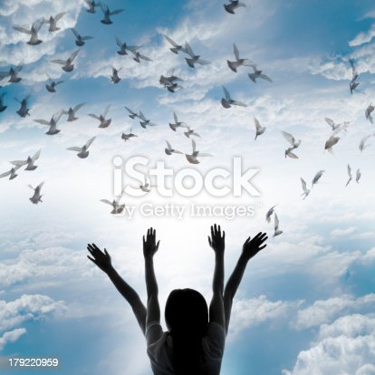 istock Silhouette of girl and flying dove on sky background, 179220959