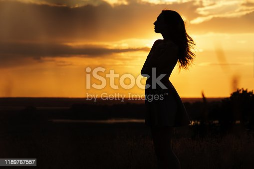 silhouette of a beautiful dreamy girl in a dress staring into the distance at sunset in a field, a young woman enjoying nature