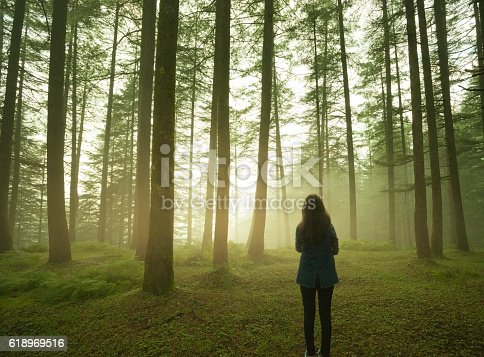 istock Silhouette of girl standing alone in pine forest at twilight. 618969516