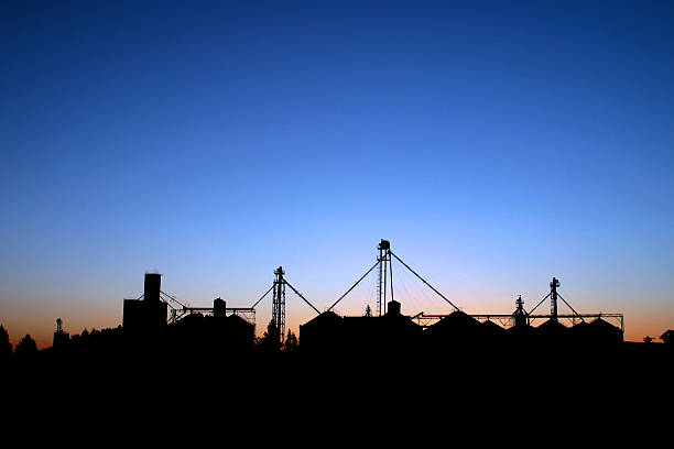 Silhouette of Grain Silos at Dawn stock photo