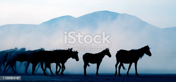 Silhouette of horses and mountains.