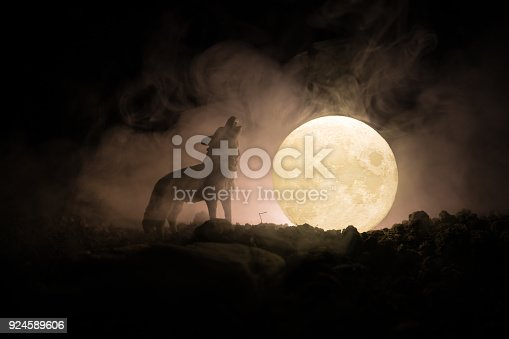 istock Silhouette of howling wolf against dark toned foggy background and full moon or Wolf in silhouette howling to the full moon. Halloween horror concept. 924589606