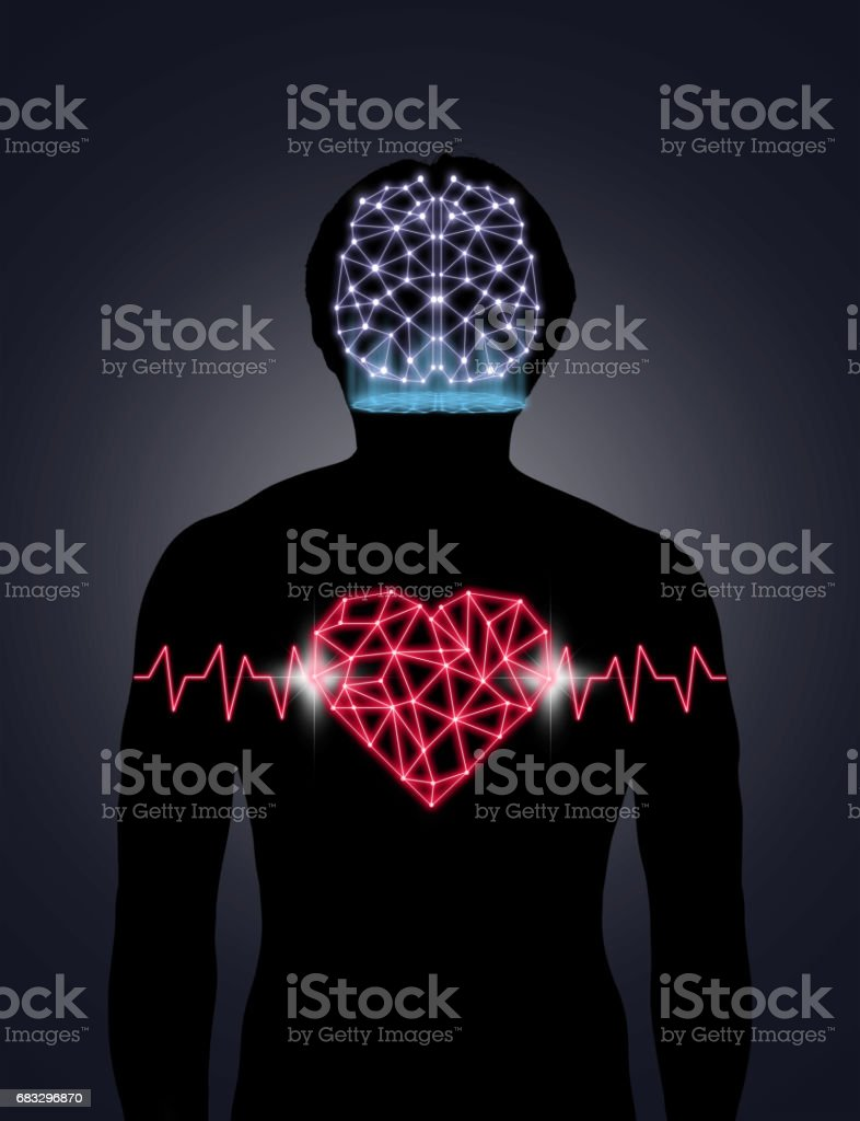 Silhouette of human body with technology line and dot of polygonal shape brain and heart, Science healthy education concept, physician technology with network connections and science healthy concept stock photo