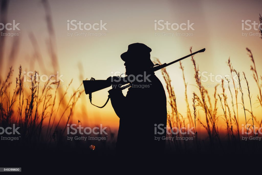 silhouette of hunter carrying shotgun on shoulder and observing stock photo