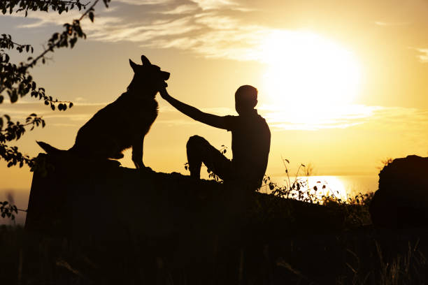 Silhouette of man and dog enjoying beautiful landscape boy with pet picture id1076778596?b=1&k=6&m=1076778596&s=612x612&w=0&h=wu2twauzm1nzwckuftbwjzs vnszk2fua6l2xsuu0t4=