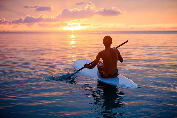 silhouette von mann-paddleboarding während dem sonnenuntergang - stehpaddeln stock-fotos und bilder