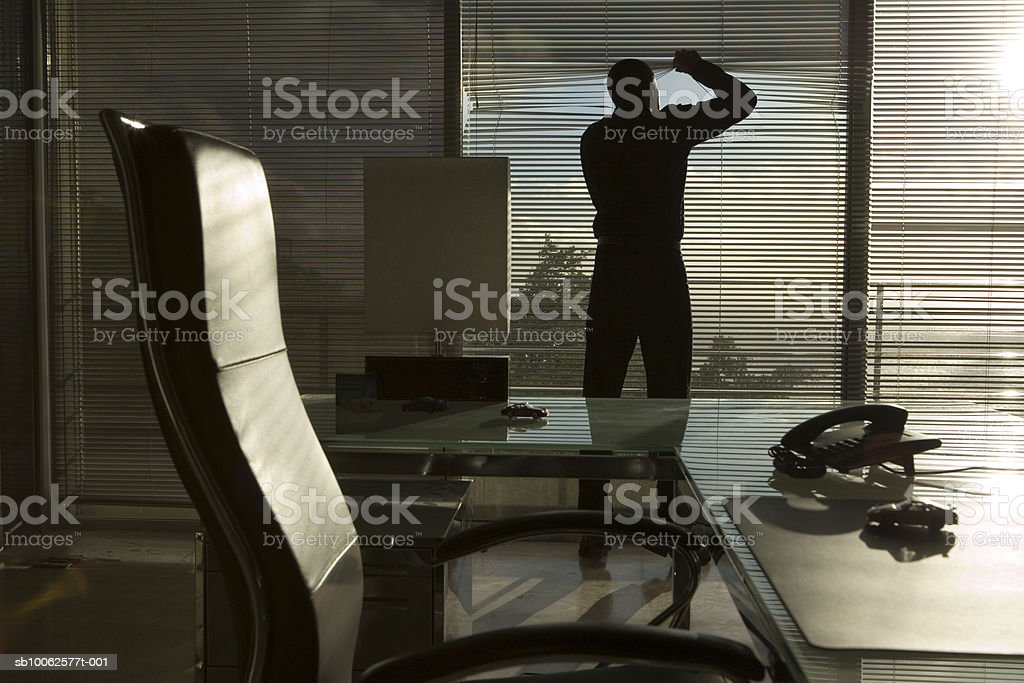 Silhouette of man peeking through blinds in office, rear view foto de stock libre de derechos