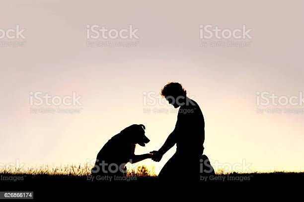 Silhouette of man shaking hands with his loyal pet dog picture id626866174?b=1&k=6&m=626866174&s=612x612&h=4jzuvbfd5wjwchgkaydd0h1a4lmebs  vtwli0cek2g=