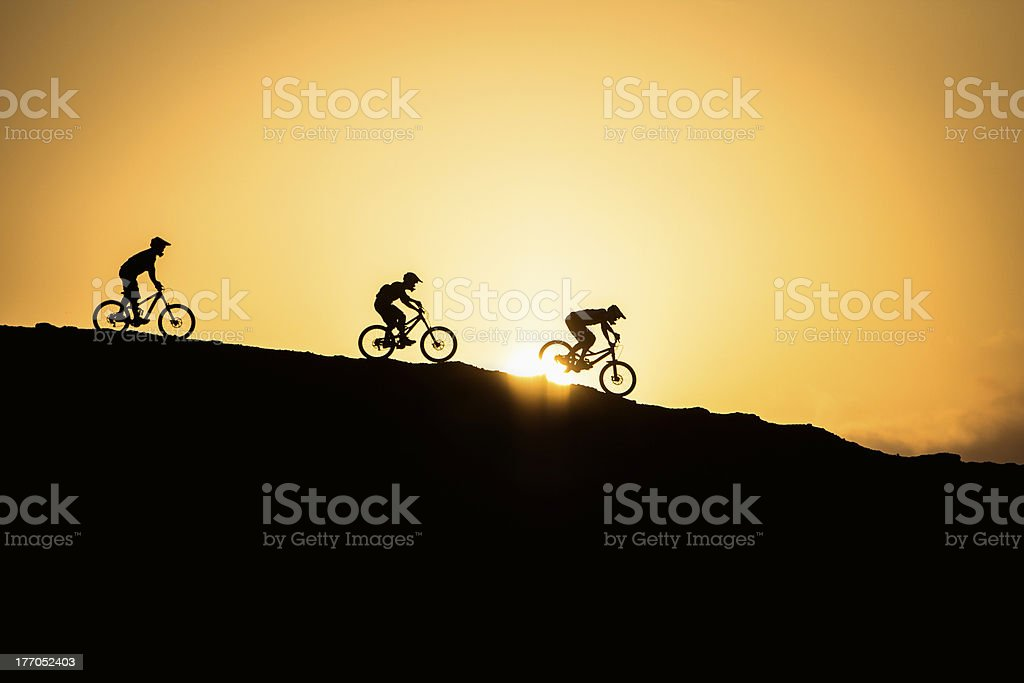 Silhouette of mountain bikers royalty-free stock photo