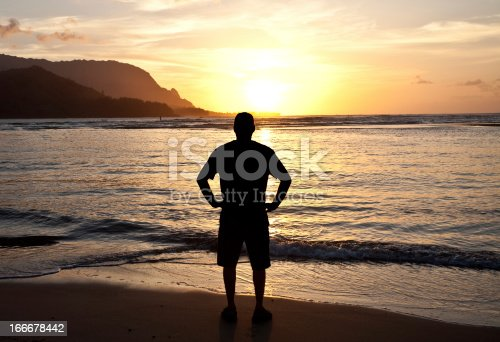 istock Silhouette of One Man Watching the Sunset 166678442