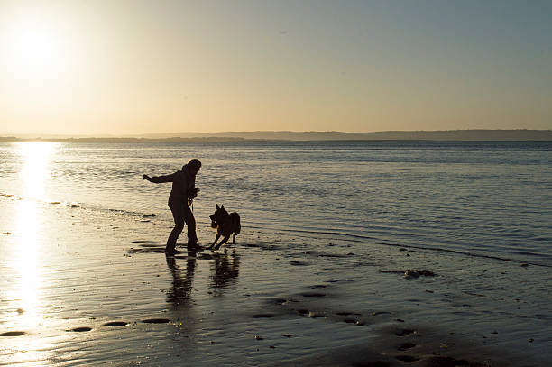 Silhouette of owner playing with dog at the beach picture id492231358?b=1&k=6&m=492231358&s=612x612&w=0&h=uza1vdyvpdhffqd342dgqjeyfzpwtrxw ffmbkcxlqa=