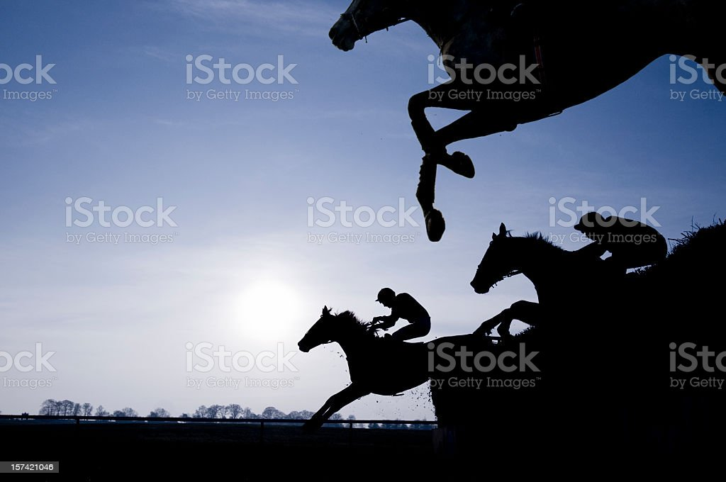 Silhouette of Race Horses Jumping a Fence stock photo