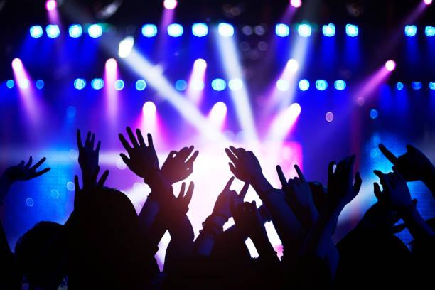 Silhouette aus erhobenen Händen und Armen bei Konzertfestival-Party – Foto