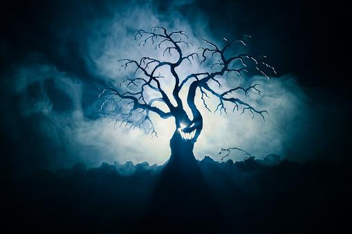 어두운 안개에 공포 얼굴 무서운 할로윈 나무 실루엣 배경 뒷면에 달 톤 좀비와 악마 얼굴 무서운 공포 나무입니다 가을에 대한 스톡 사진 및 기타 이미지