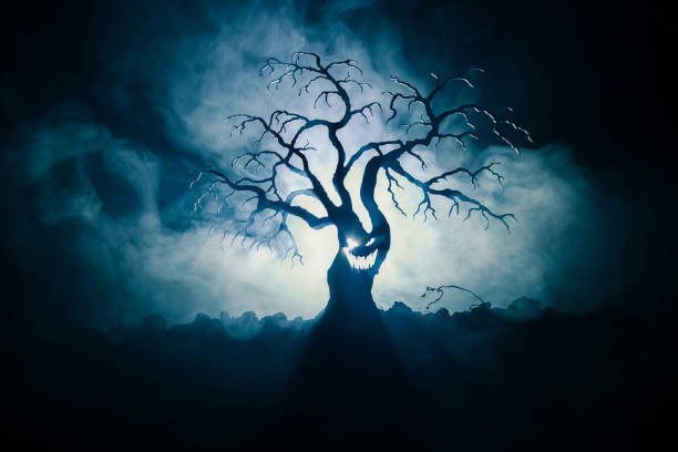 Silhouette of scary Halloween tree with horror face on dark foggy toned background with moon on back side. Scary horror tree with zombie and demon faces. – zdjęcie