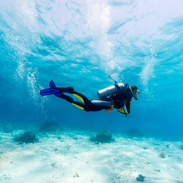 Silhouette de plongeur près de fond de la mer - Photo