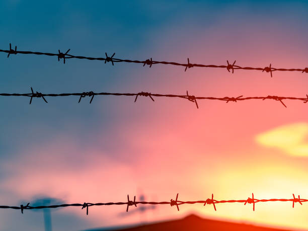 Silhouette of sharp barbed wire against sunset background, beautiful sunset and colorful sky stock photo