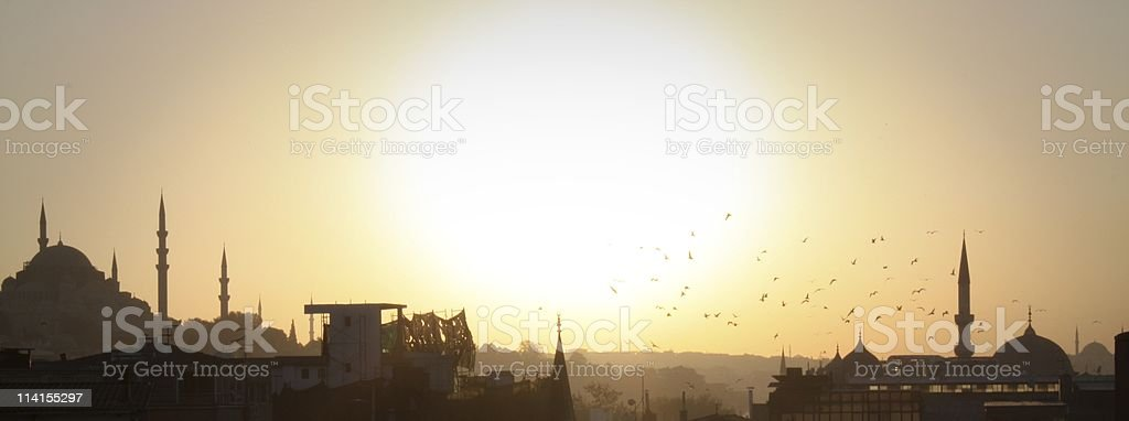 Silhouette of Suleiman mosque and seagulls at sunset stock photo