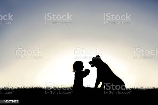 Silhouette of sweet little child sitting outside with her loyal pet picture id1163077673?b=1&k=6&m=1163077673&s=612x612&h=ed1ddaja1txukk8trqimbyu 8fxvlcb1dndmgrpedaq=