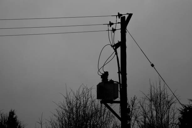 Silhouette of telegraph pole, wires and branches stock photo