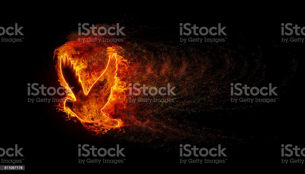 Silhouette of the bird with the flames stock photo
