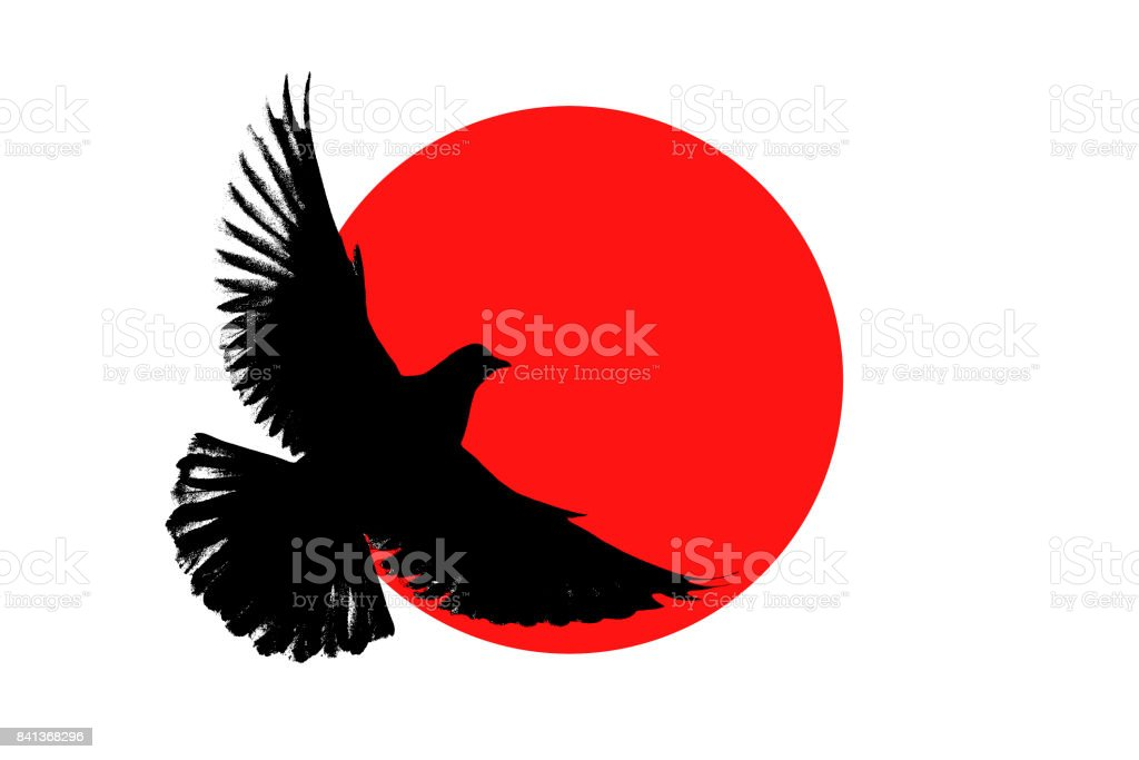 Silhouette of the pigeon on the Japanese flag stock photo