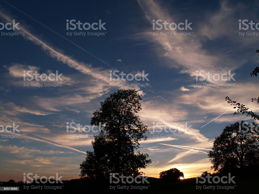 Silhouette of tree against  Summer Sky royalty-free stock photo