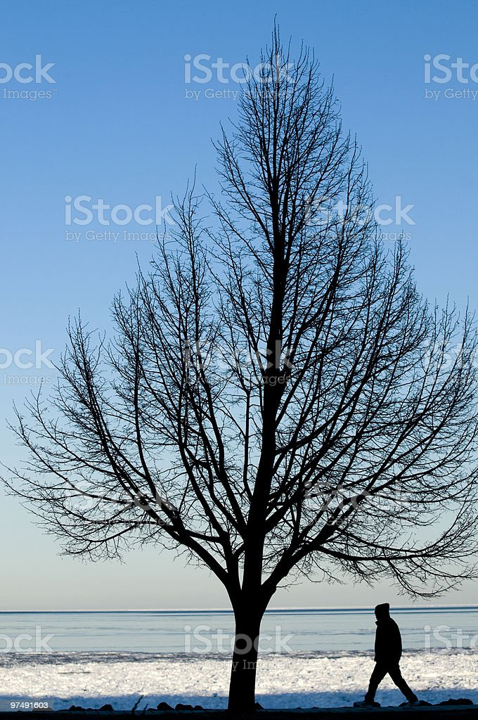 Silhouette of Tree and Man Walking By Lake Shore royalty-free stock photo
