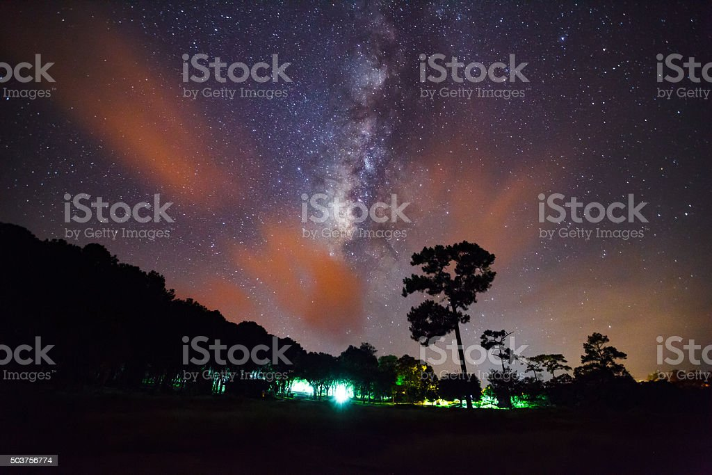 Silhouette of Tree and Milky Way. Long exposure photograph. stock photo